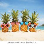Les séjours insulaires vers des destinations utilisées dans des émissions télévisées et endossées par des célébrités deviennent populaires - Choisissez vos vacances au soleil€