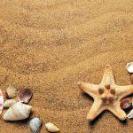 Costa célèbre (pour la 26e fois) ses meilleurs vendeurs - Bonnes destinations en été€
